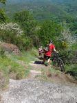 vélo,vtt,sumène artense vtt tour,randonnée,entraînement