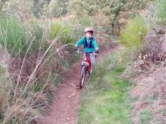 vélo,vtt,randonnées,montée impossible,châtaigneraie