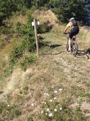 vélo,vtt,randonnées,envie,flemme,sancy verte