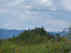 vélo,vtt,météo,randonnée,panoramas,échappées,adaptation,llimagne,nature,paysages,auvergne,romain bardet,verlaine,15 août