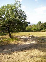 paysages VTT Brioude 07.2005 008.jpg